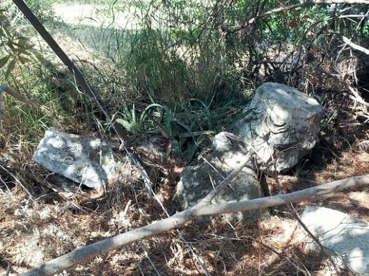 שרידי בית הכנסת. אתר מוזנח
