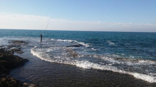 להתמכר לגלים. חוף דור