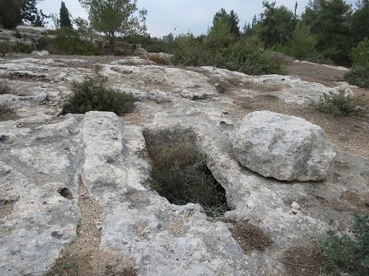 האם ביער בן שמן נמצאים קברות המכבים? החוקרים חלוקים בדעותיהם