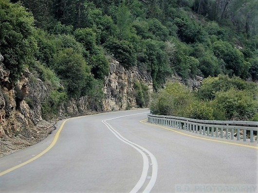 סלעים, שקדיות ויופי מרהיב. הדרך מכיכר עין כרם לצומת נס הרים / צילום: הבנזוג
